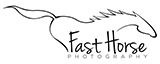 Fast Horse Photography